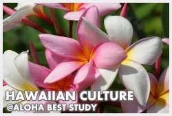 Hawaiian Culture Lesson
